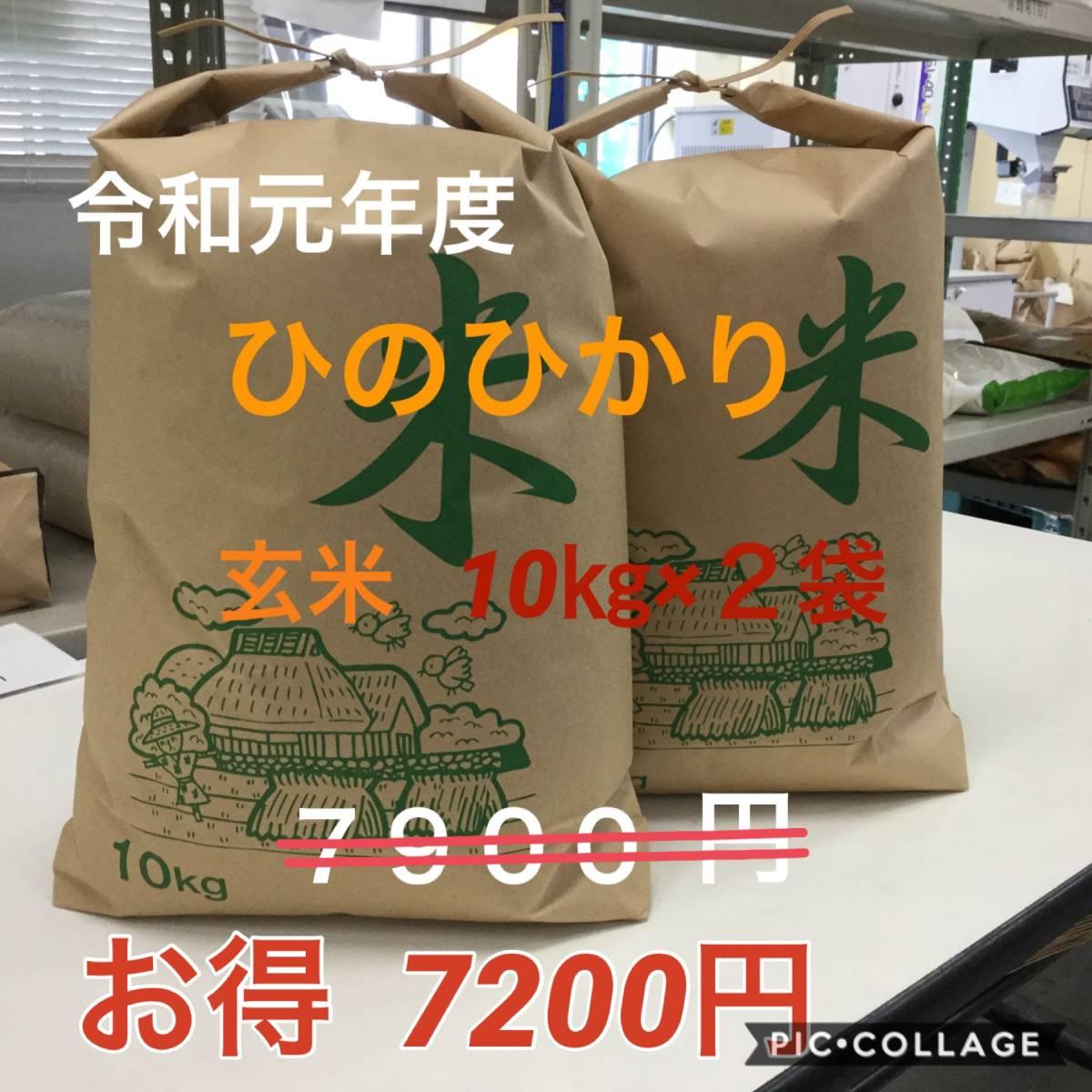 令和元年度 ひのひかり 玄米10㎏×2袋 もちもち 生産者直送_画像1