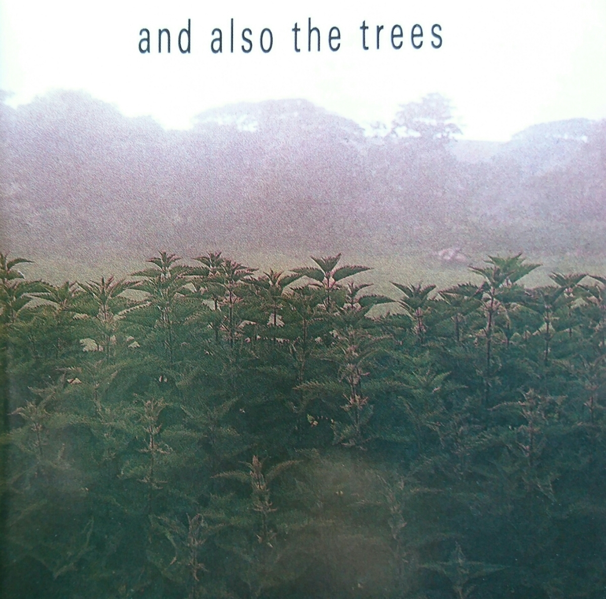CD【ネオ・サイケ名盤】And Also The Trees『And Also The Trees』1st Album ▽The Cure/Joy Division/Neo Psychedelic/New Wave/_画像1