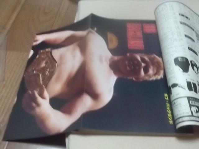 日本スポーツ。別冊ゴング1977年4月号。マスカラス。馬場。プロレス。アリ。猪木_画像2