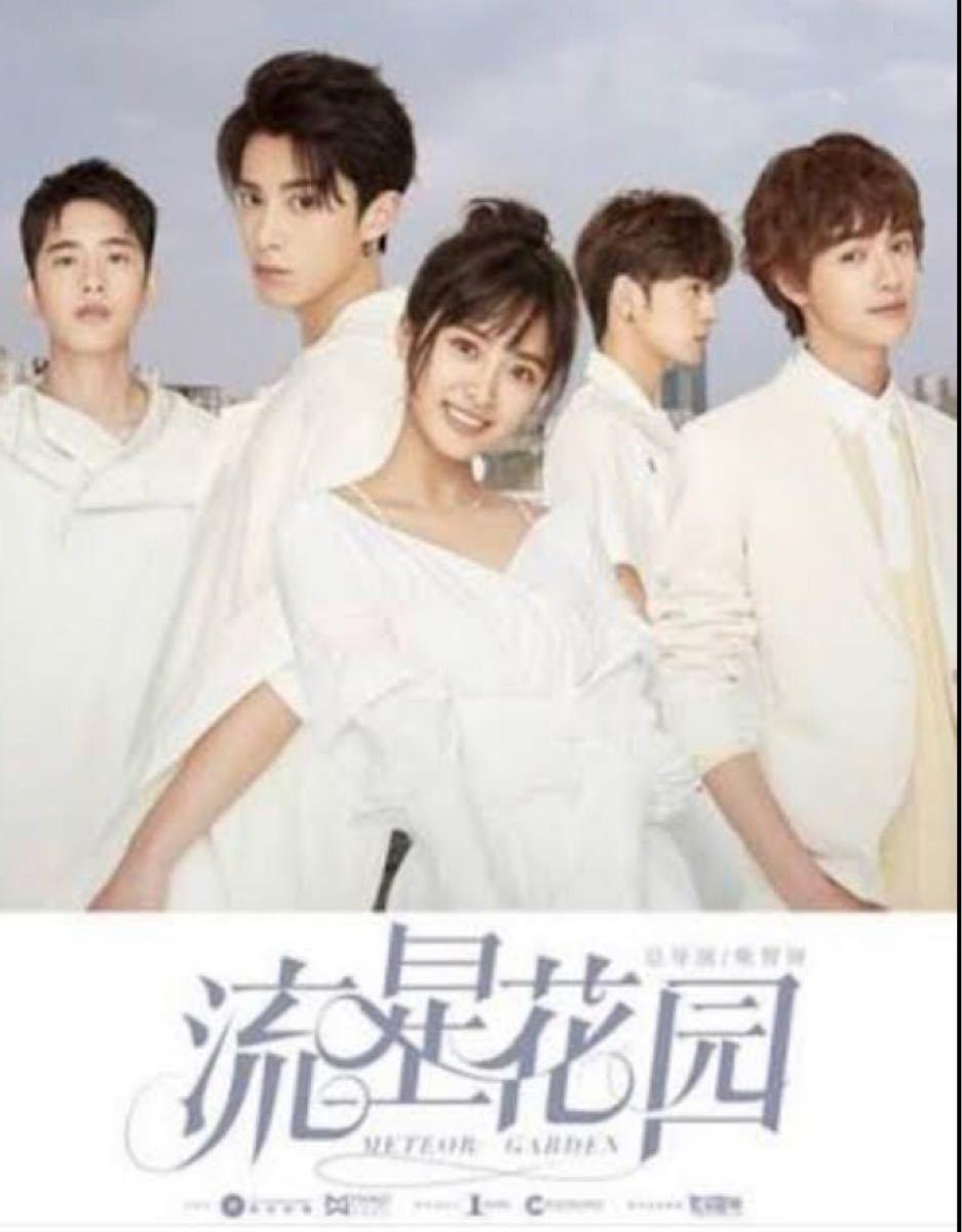 中国ドラマ 流星花園2018 DVD全話