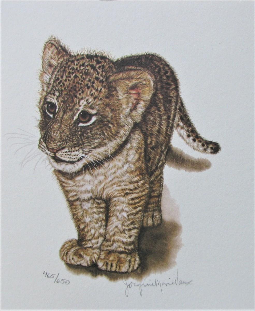 世界最高峰の動物作家,ジャッキーマリーヴォーグ「ミニライオンカブ」オフセットリトグラフ,サイン,エディションナンバー入り