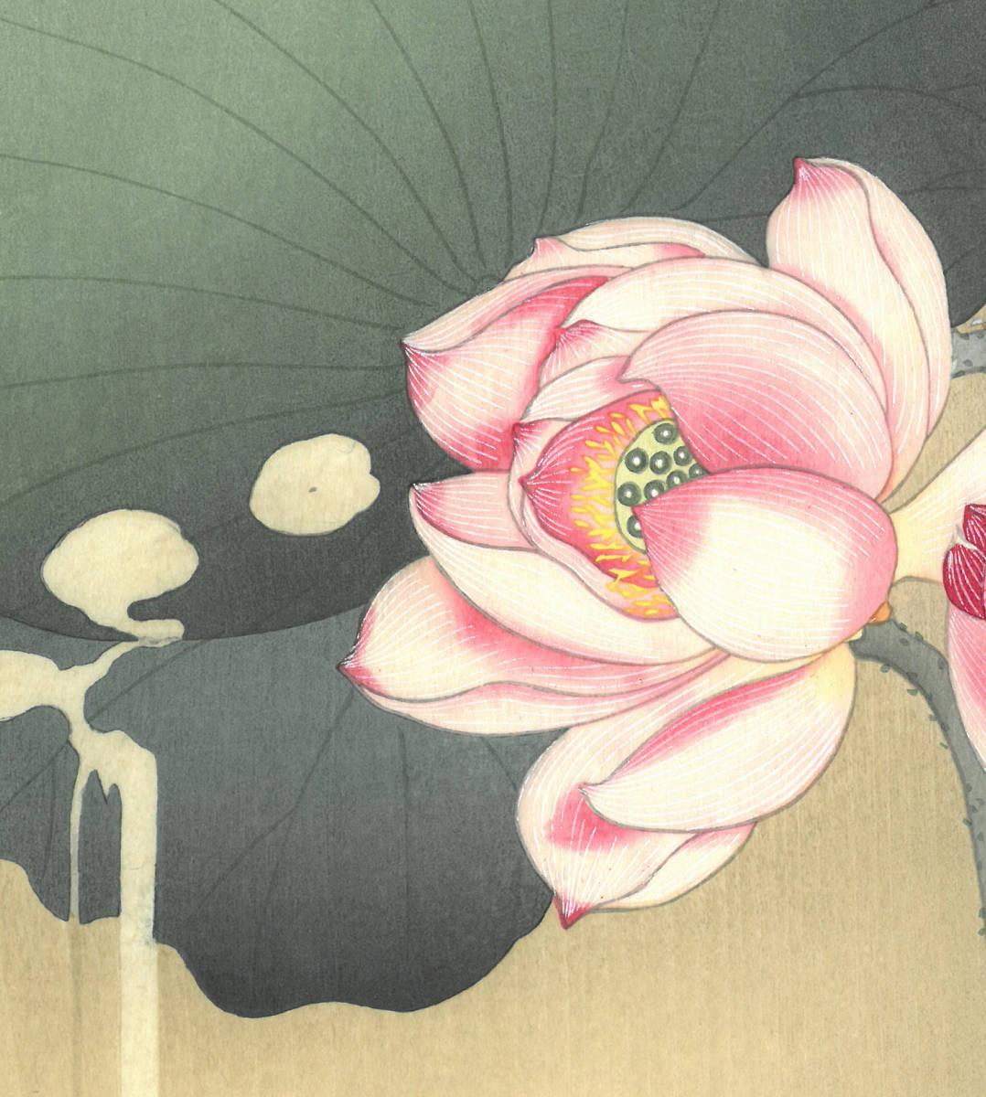 小原古邨 (Ohara Koson) (1877~1945) 木版画 蓮に雀 (Lotus and sparrow) 最高峰の摺師が50回以上の摺りの工程で仕上げた奇跡の一品!!_画像8