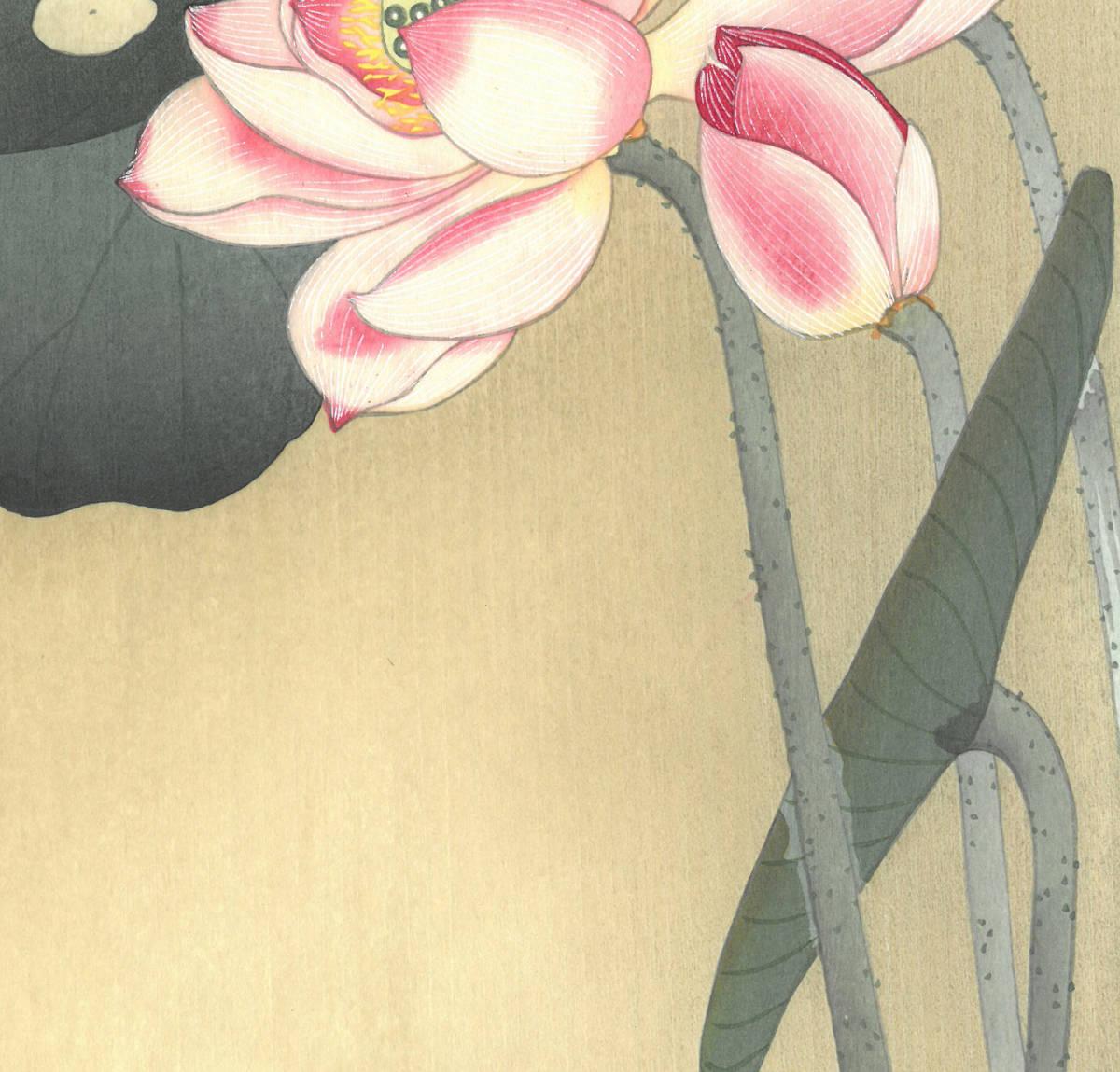 小原古邨 (Ohara Koson) (1877~1945) 木版画 蓮に雀 (Lotus and sparrow) 最高峰の摺師が50回以上の摺りの工程で仕上げた奇跡の一品!!_画像9