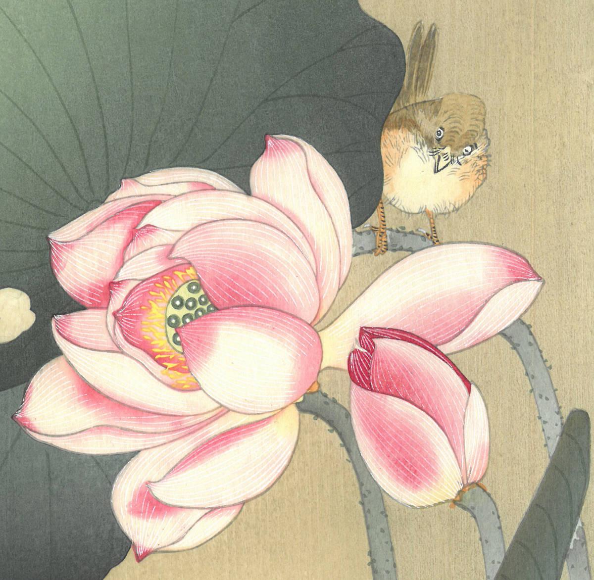 小原古邨 (Ohara Koson) (1877~1945) 木版画 蓮に雀 (Lotus and sparrow) 最高峰の摺師が50回以上の摺りの工程で仕上げた奇跡の一品!!_画像7