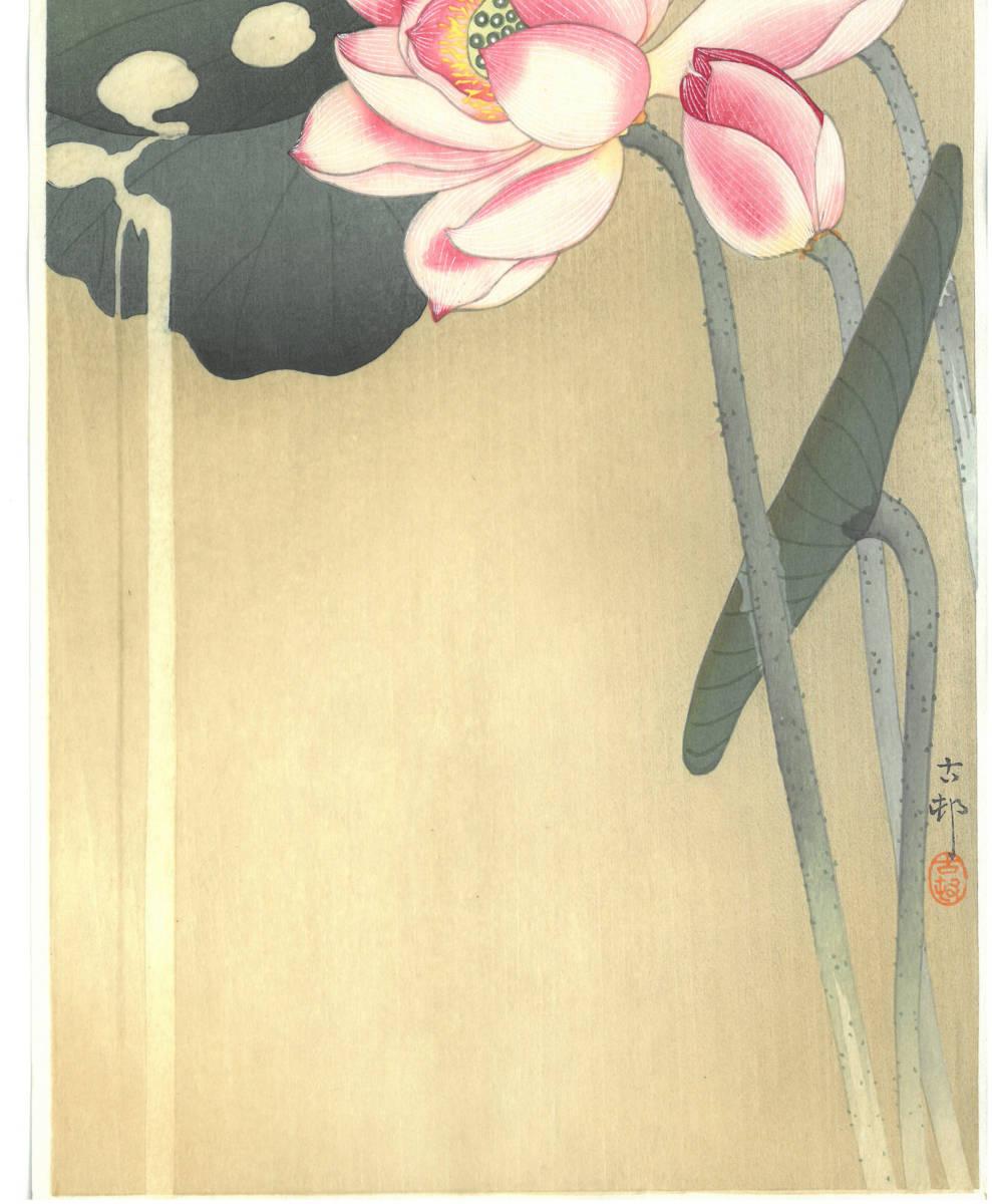 小原古邨 (Ohara Koson) (1877~1945) 木版画 蓮に雀 (Lotus and sparrow) 最高峰の摺師が50回以上の摺りの工程で仕上げた奇跡の一品!!_画像6