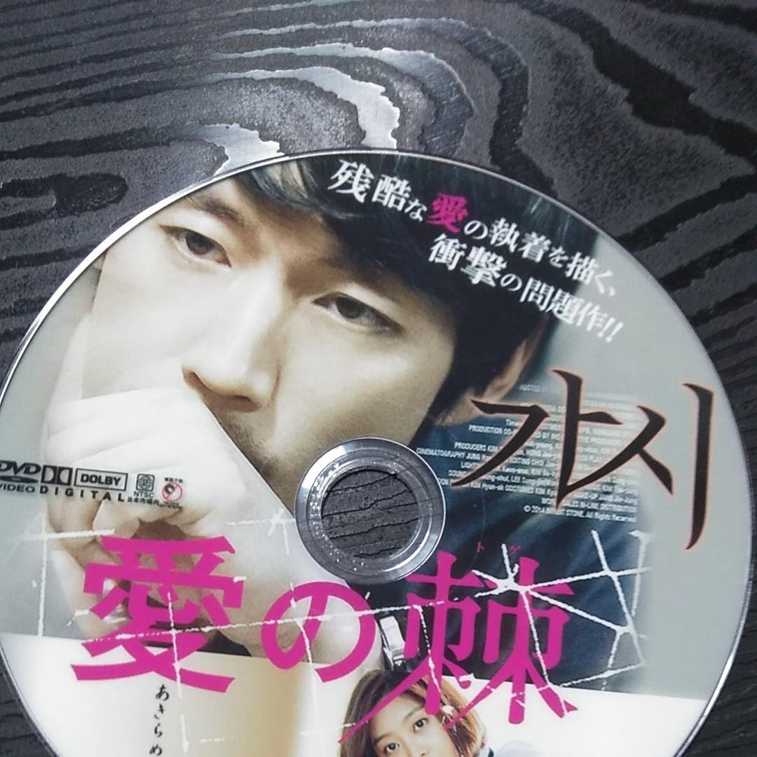 韓国ドラマ チャン・ヒョク 愛の棘DVD