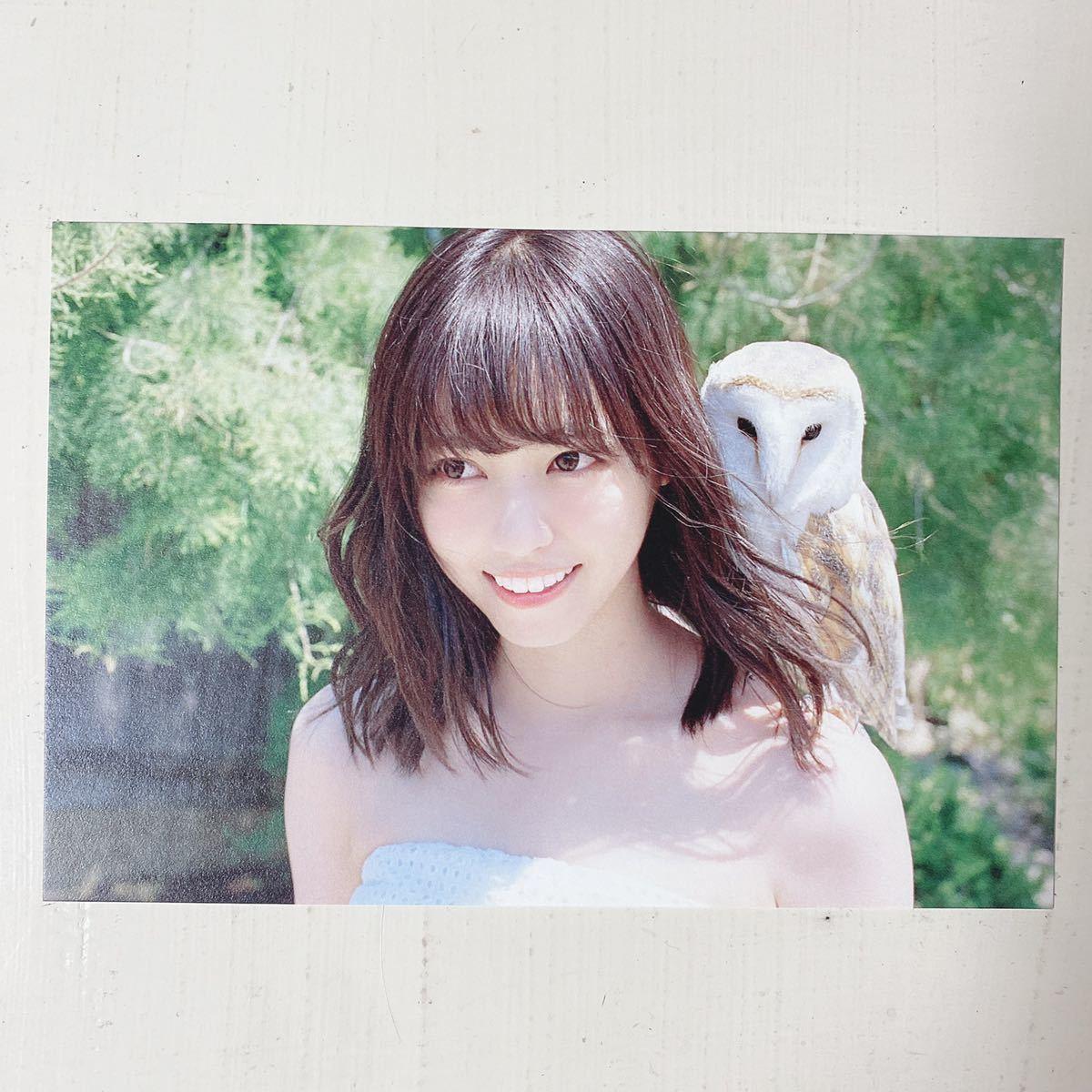 乃木坂46◆西野七瀬◆風を着替えて◆写真集◆ポストカード◆即決._画像1