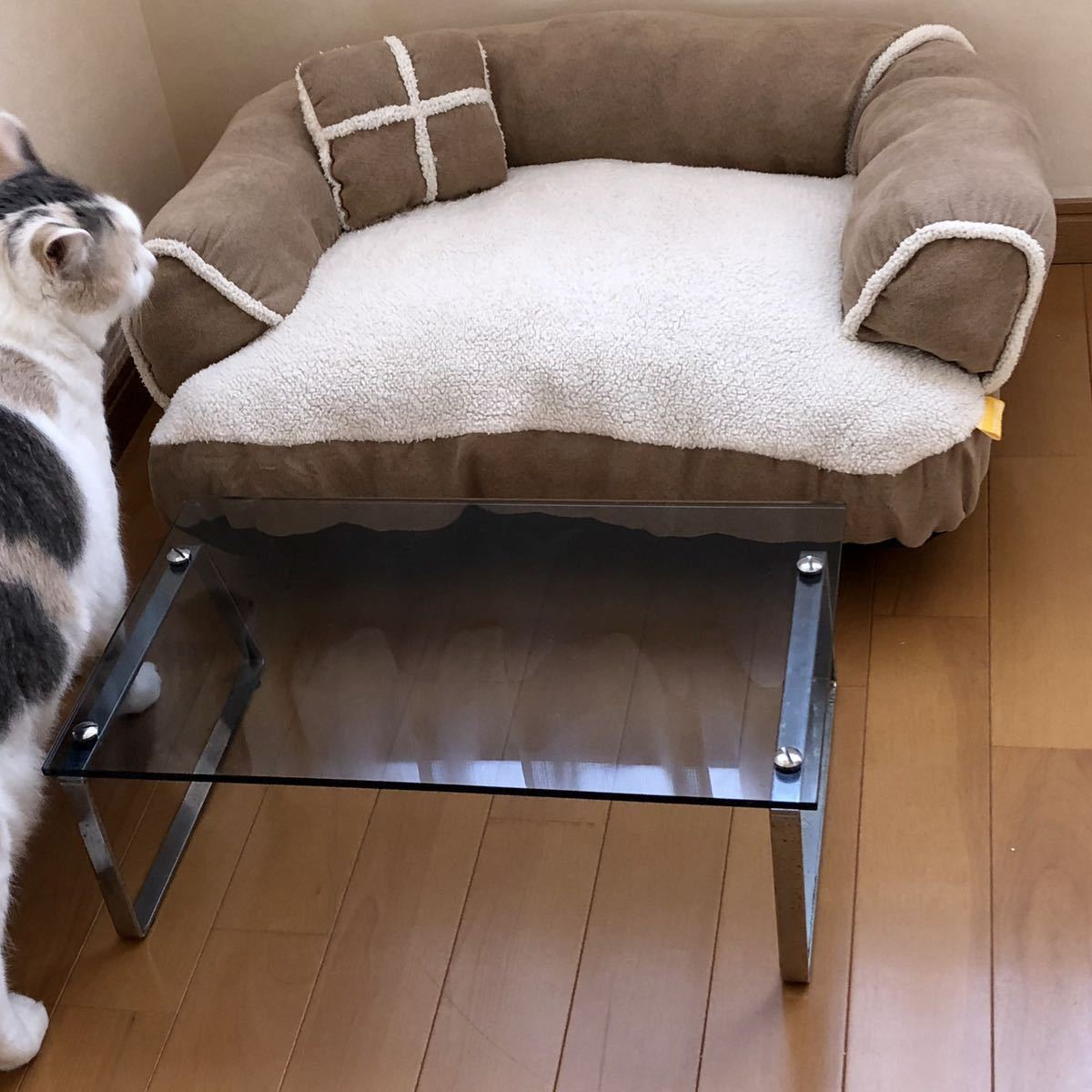 猫用ミニソファー・テーブル セット【SALE!】丸洗い洗濯済み! クッション付き