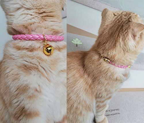猫用首輪 PUレーザー 首輪