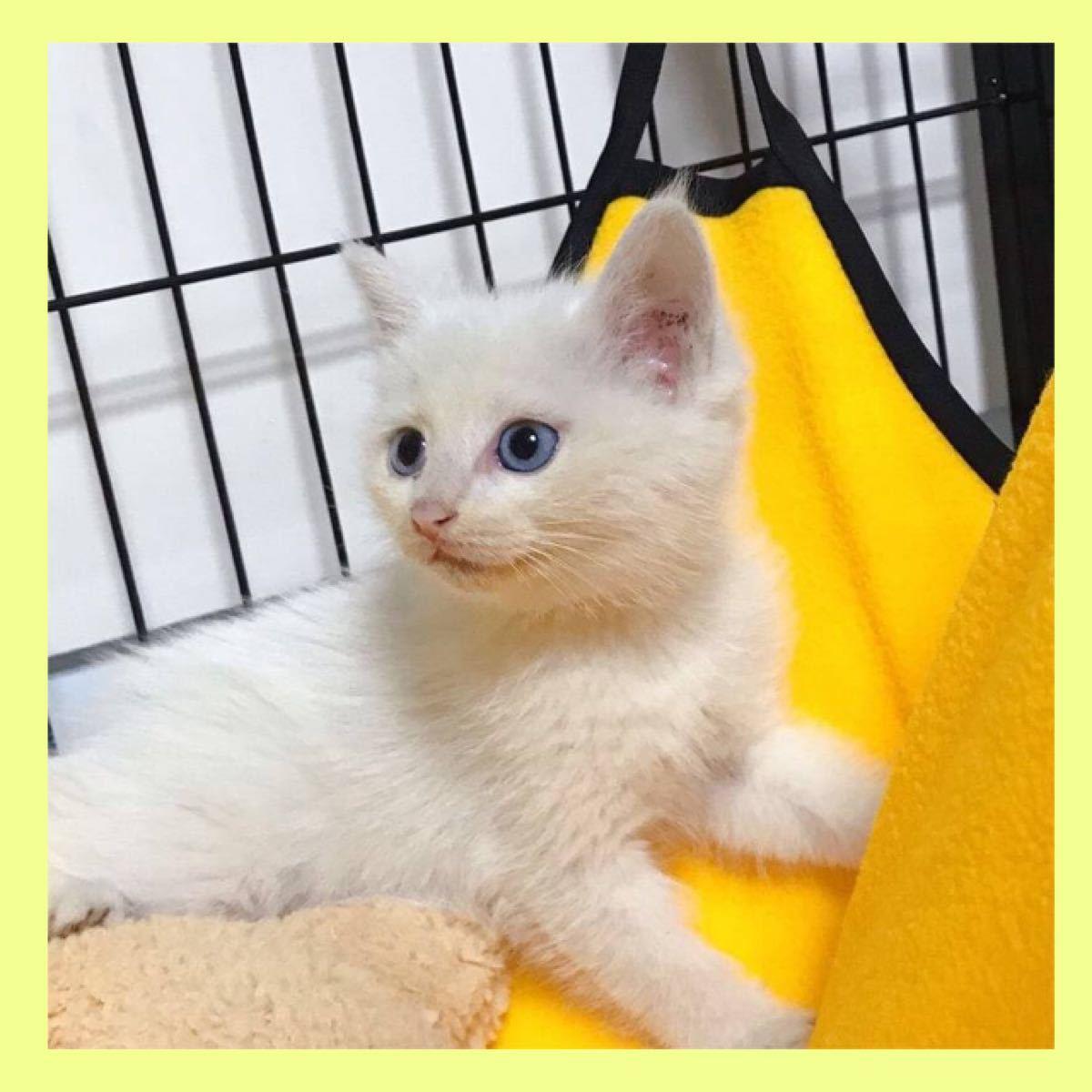 【新品未使用】猫ちゃんハンモック フリース イエロー