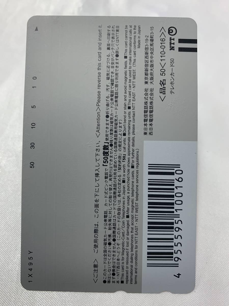 【未使用品】川村ゆきえ 週刊プレイボーイ テレホンカード テレカ_画像2