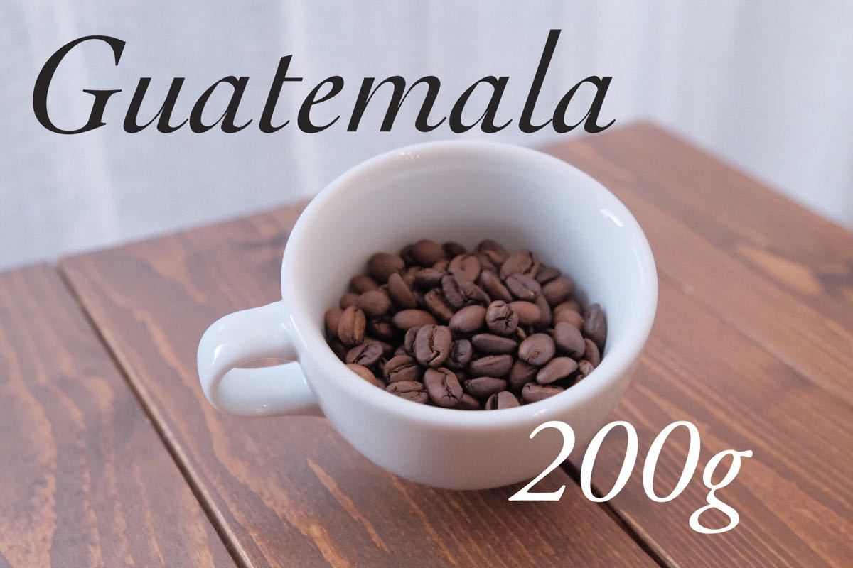 コーヒー豆 グアテマラ スペシャルティコーヒー お試し付き Rabbit village