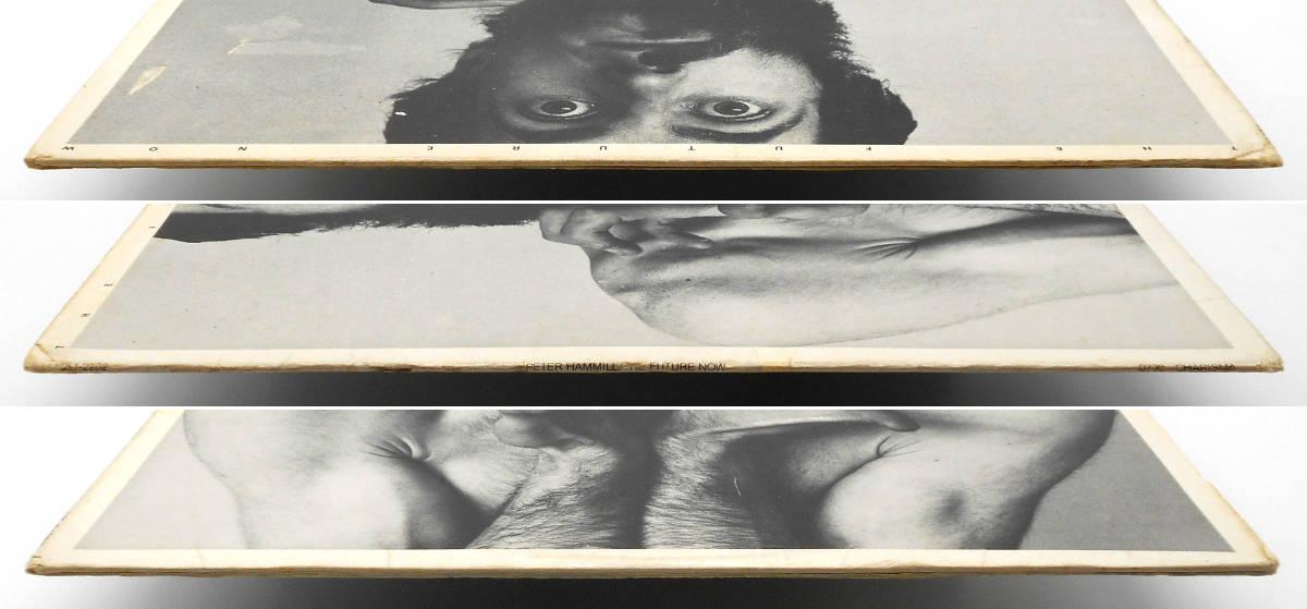 ★美盤 US ORIG 白プロモ LP★PETER HAMMILL/The Future Now 1978年 元VAN DER GRAAF GENERATOR アヴァンギャルド 傑作 高音質盤 PROMO WLP_画像5