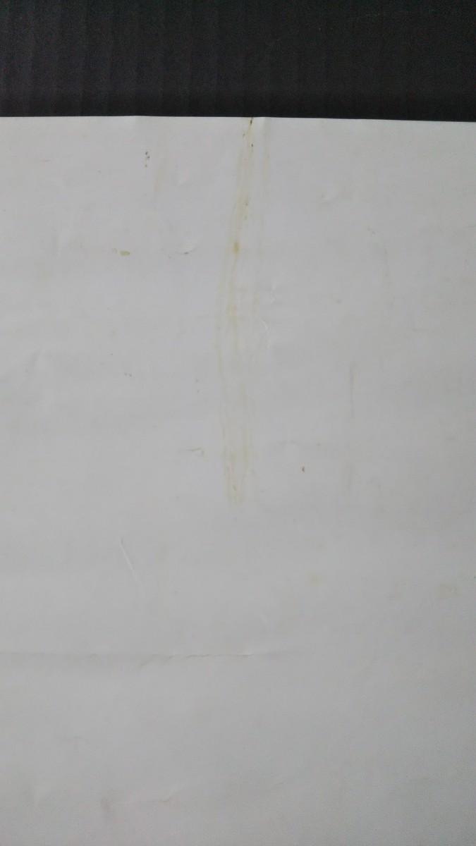 桜樹ルイ パピヨンのポスター 直筆サイン入り