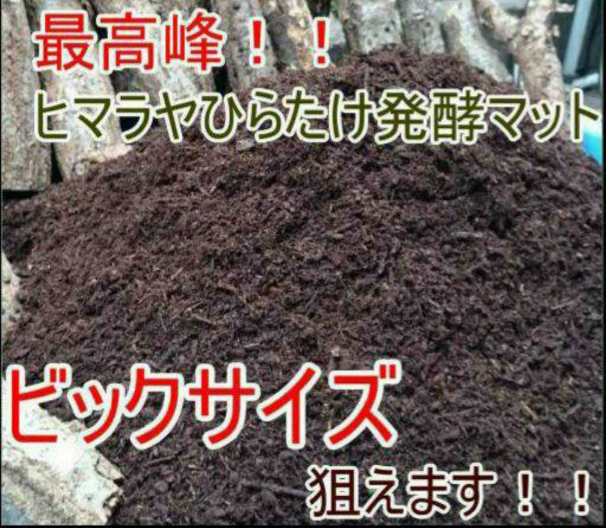 ヘラクレスもビッグサイズになります!ヒマラヤひらたけ菌床発酵カブトムシマット!栄養価抜群!クヌギ100%原料 幼虫の餌、産卵マットに!_画像2