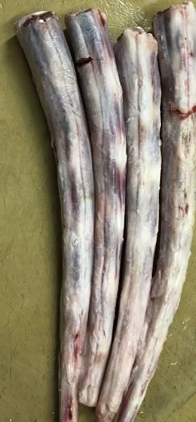 送料込み!!【9数】安心 安全 信頼 北海道産牛テール骨 冷凍 1.0Kg 国産牛 テール 冷凍 ホルモン スープ 焼肉国産 和牛経産 テールスープ_牛テールの先っぽの部分になります。