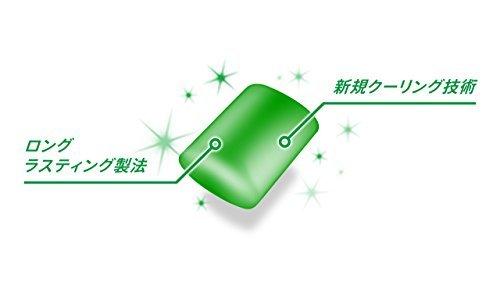 ★大感謝祭★モンデリーズ・ジャパン クロレッツXPオリジナルミントボトルR 140g_画像5