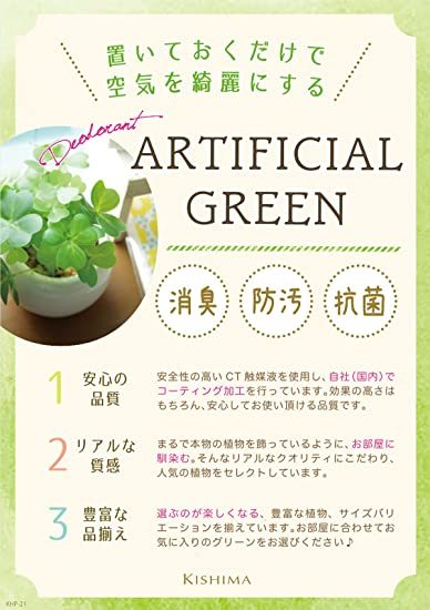 CT触媒 消臭 アーティフィシャルグリーン サキュレントリフレリウム