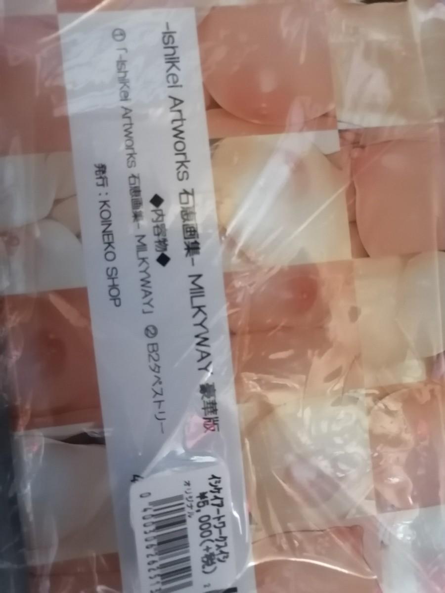 石恵  画集  豪華版  タペストリー未使用 他 フルカラー同人誌3冊セット!