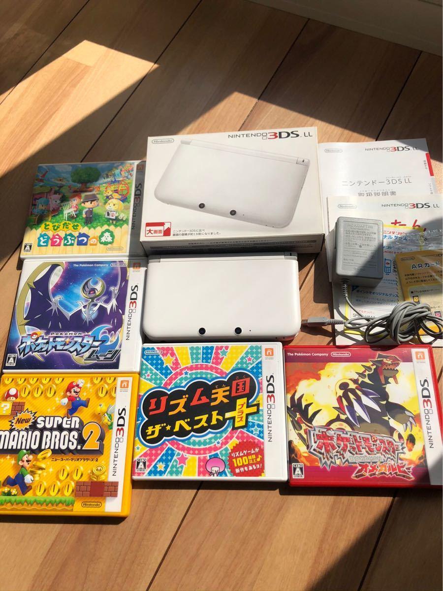 ソフト 任天堂 ニンテンドー3DS LL