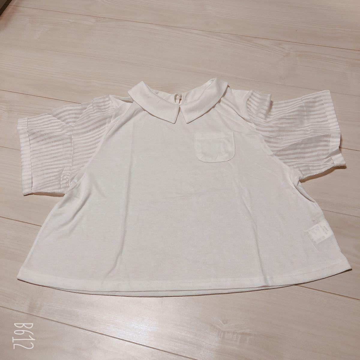 半袖Tシャツ トップス カットソー シンプル シースルー ボーダー