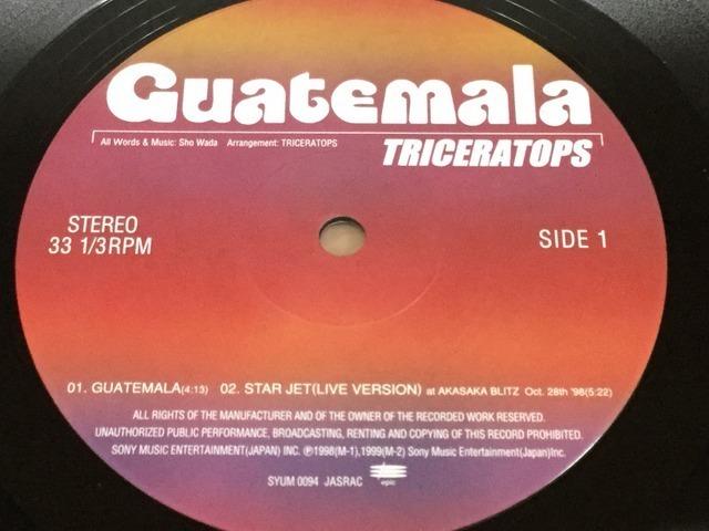 【V139】Triceratops トライセラトップス/Guatemala/SYUM-0094/Epic/10inch_画像4