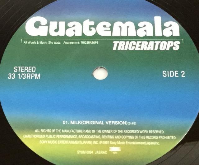 【V139】Triceratops トライセラトップス/Guatemala/SYUM-0094/Epic/10inch_画像5