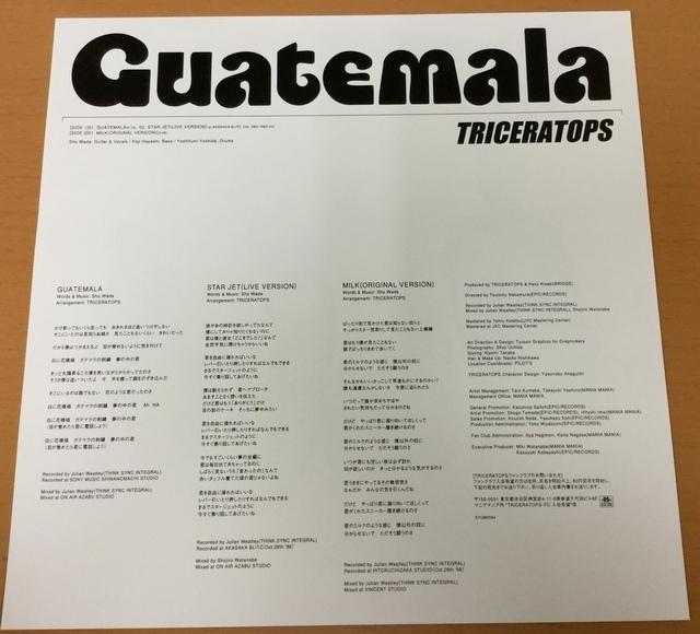 【V139】Triceratops トライセラトップス/Guatemala/SYUM-0094/Epic/10inch_画像3
