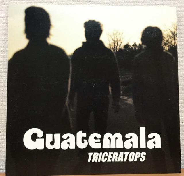 【V139】Triceratops トライセラトップス/Guatemala/SYUM-0094/Epic/10inch_画像1