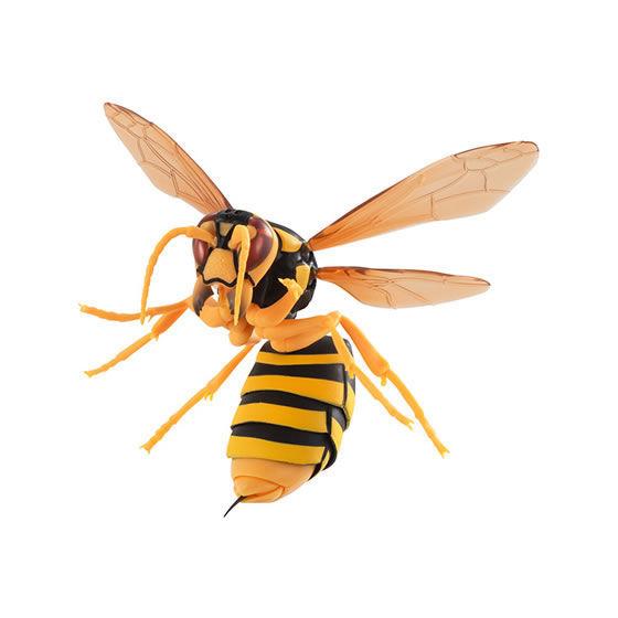 【ガチャ】 すずめばち キイロスズメバチ ◆ バンダイ ガシャポン_SAMPLE