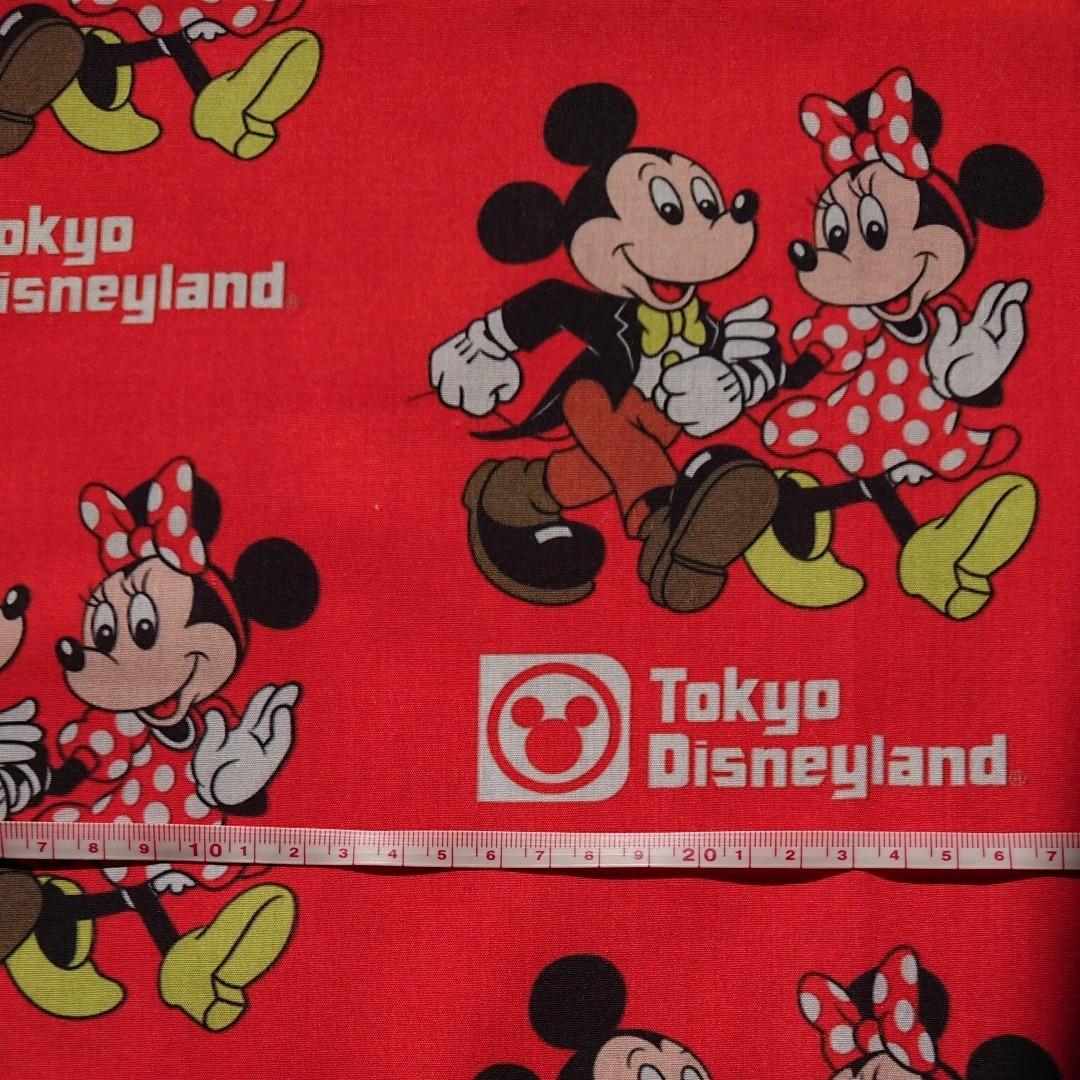ディズニー  生地  ハギレ  ショパー袋柄