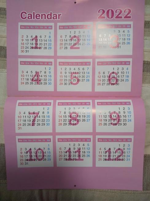 W【プリンセス 壁掛けカレンダー 2021年 A4 祝日シール付き】ラプンツェル アリエル オーロラ シンデレラ ★すぐに発送します!★_画像3