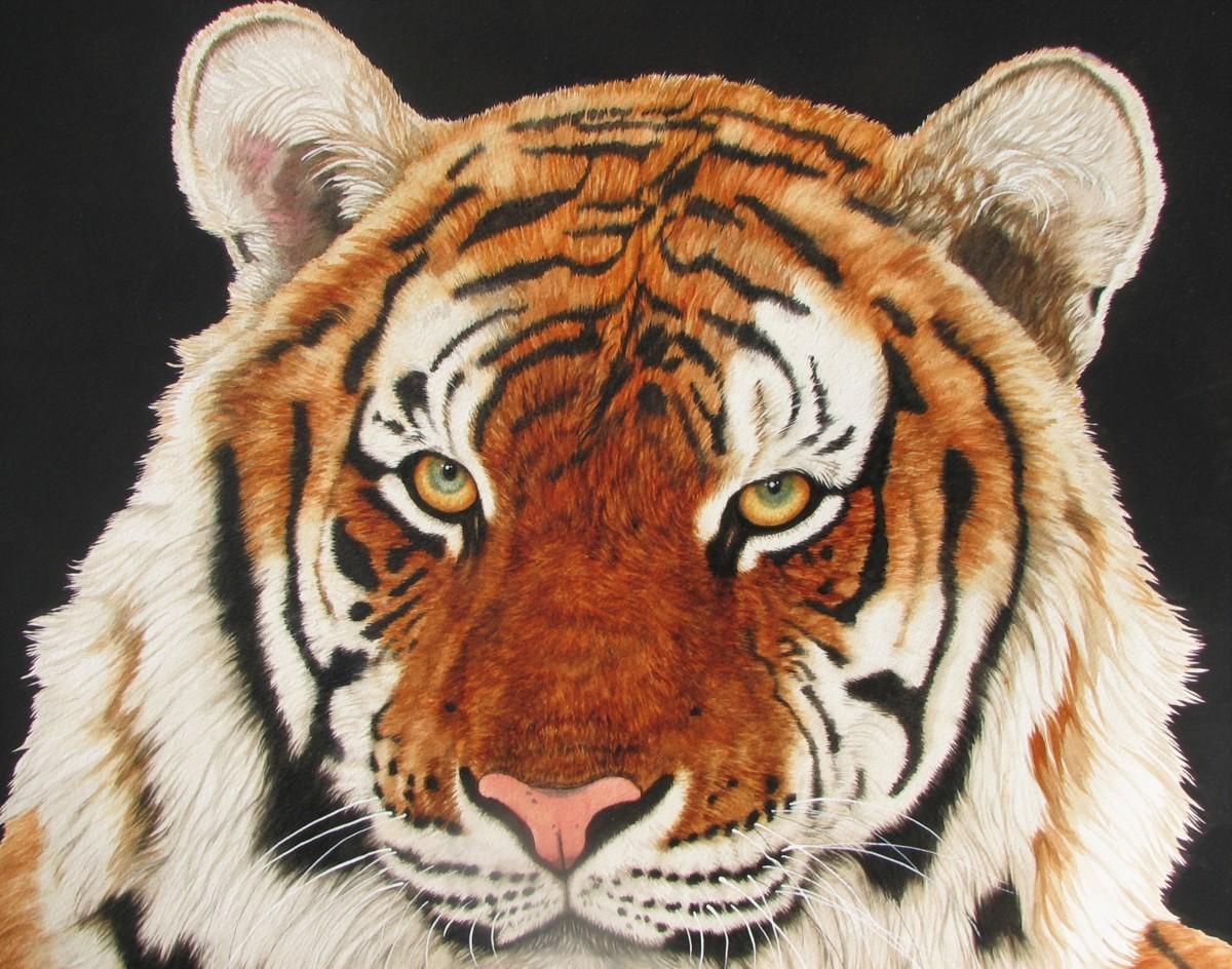 世界最高峰の動物作家,ジャッキーマリーヴォーグ「タイガーフェイス」約S20号大,オリジナル作品,驚天動地の細密描写,魂込めた迫真の大傑作