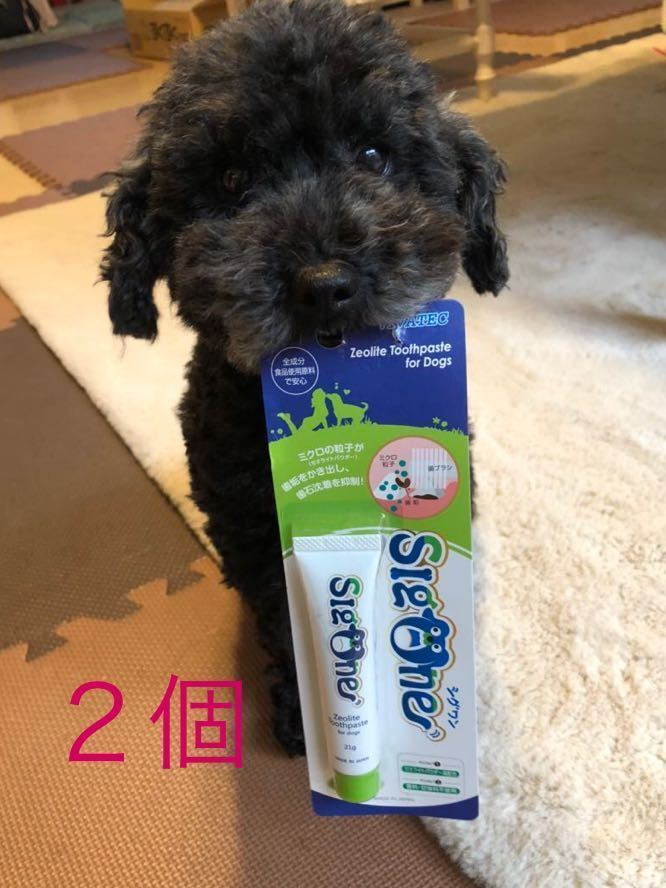 ビバテック シグワン ゼオライトハミガキ 犬用 2個 _シグワン 2個