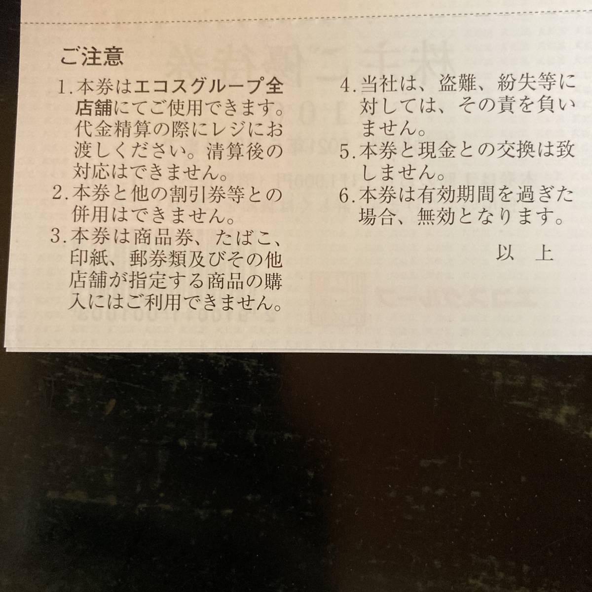 エコスグループ 株主優待券 3000円分 2021年5月31日まで_画像3