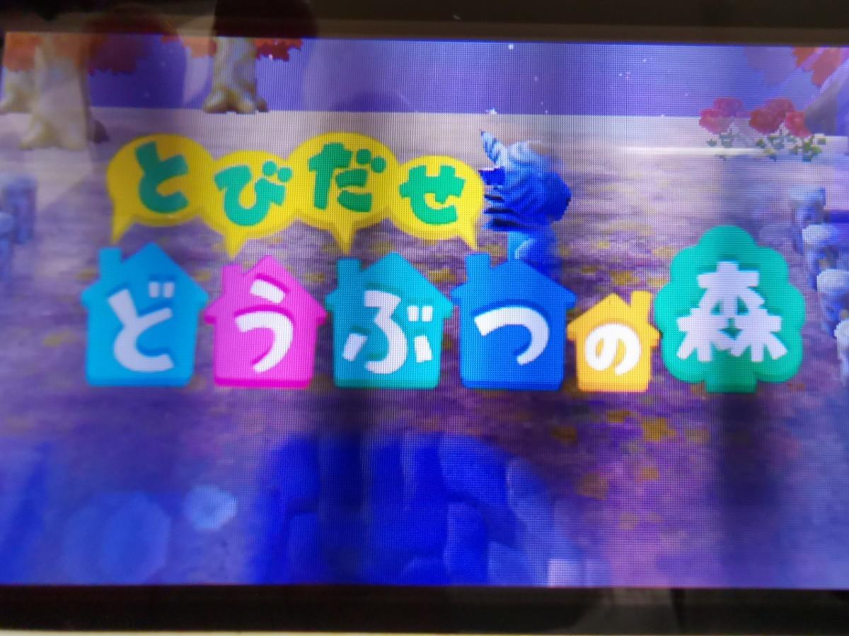 3DSソフト とびだせどうぶつの森 ニンテンドー3DS
