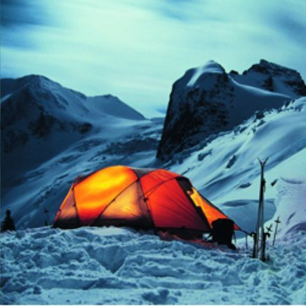 軽量 アルミ ペグ ケース付 10本セット ブラック BBQ ソロキャンプ キャンプ アウトドア テント タープ
