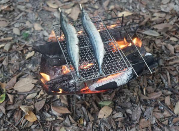 焚き火台 薄型 軽量 ステンレス製 コンロ バーベキュー BBQ ソロキャンプ キャンプ アウトドア