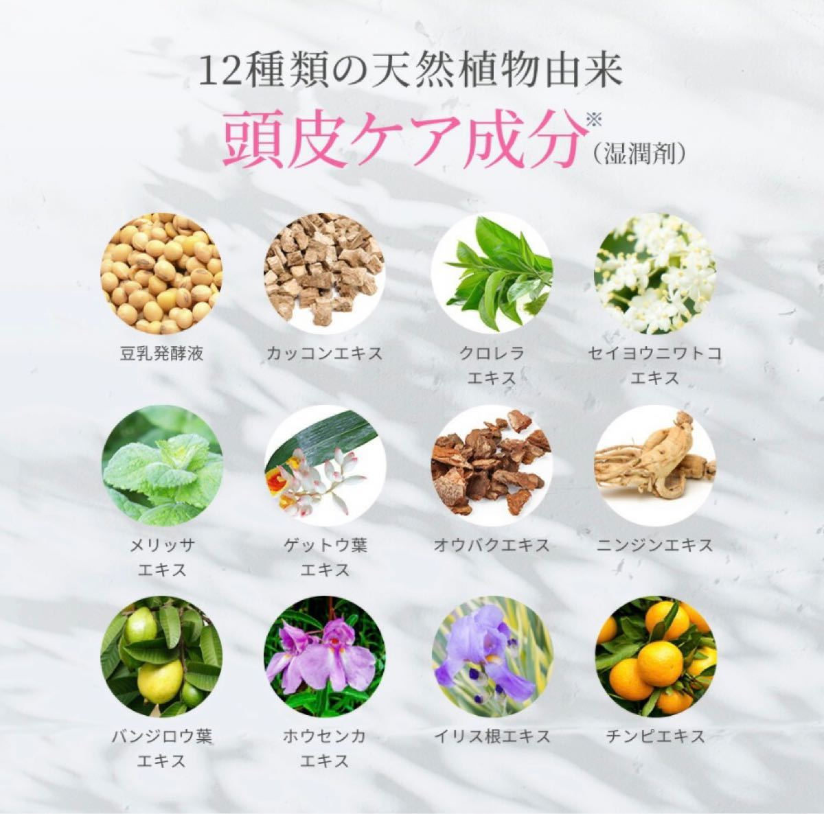 【予防医学】スカルプDボーテ シャンプートリートメントセット ボリュームタイプ
