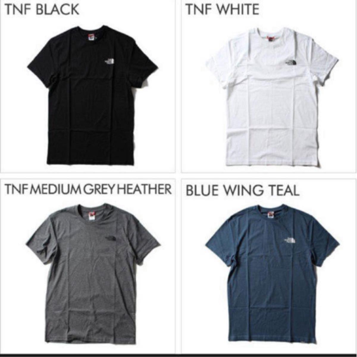 ザ ノースフェイス THE NORTH FACE メンズ Tシャツ 半袖