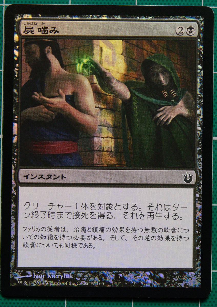 MTG マジック・ザ・ギャザリング 屍噛み Foil (コモン) 神々の軍勢 日本語版 1枚 同梱可_画像1