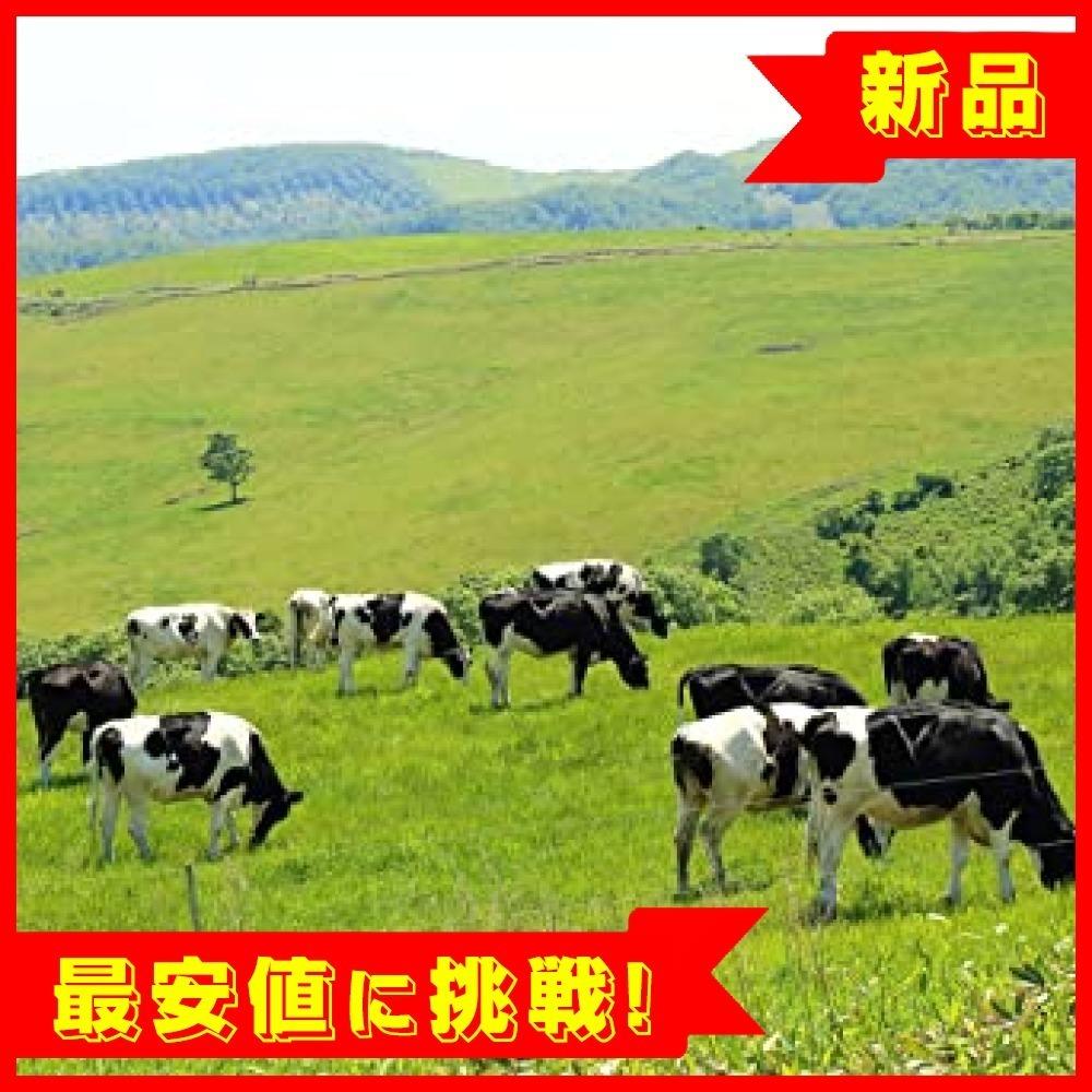 【残2】 ご飯のお供 北海道産 十勝 牛しぐれ 90g瓶 単品 北国からの贈_画像8