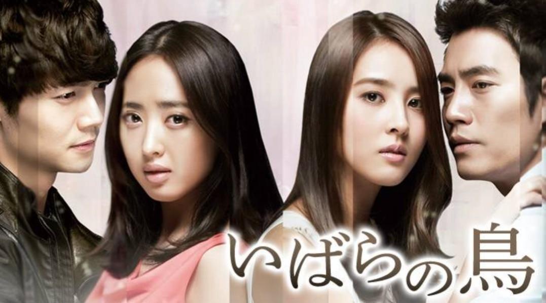 (ケース付) 韓国ドラマ Blu-ray いばらの鳥 ブルーレイ