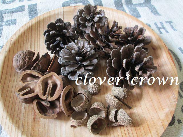 C*C 木の実セット3種 リース素材 松ぼっくり 胡桃 どんぐり帽子 ボタニカルアート ハーバリウム 植物標本③_画像1