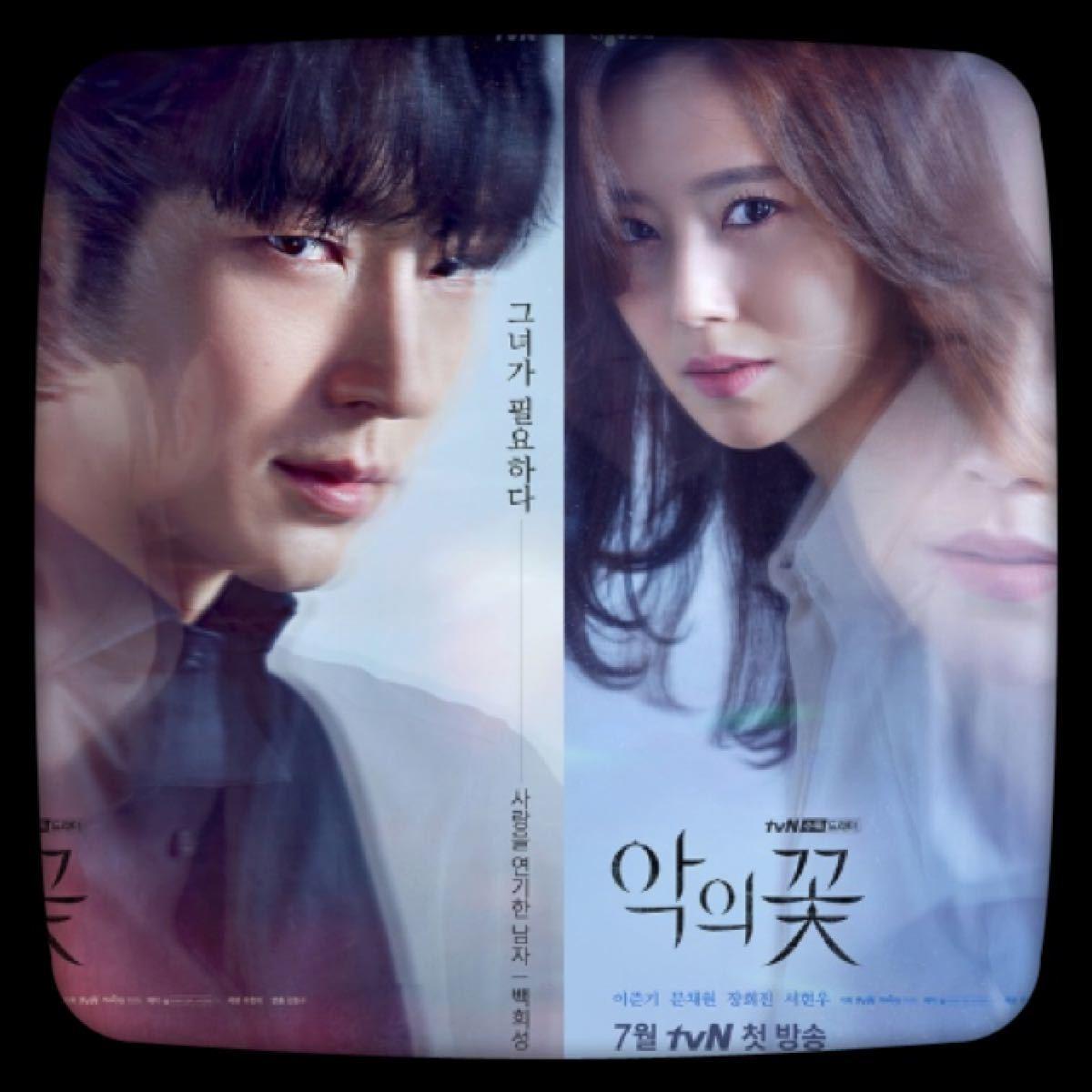【悪の花】Blu-ray 韓国ドラマ 韓流