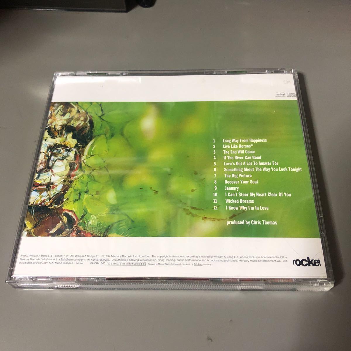 エルトン・ジョン ビック・ピクチャー 国内盤CD