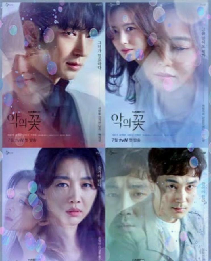 韓国ドラマ 悪の花 DVD