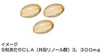 ★在庫徹底処分★360粒 ゴールドジム(GOLD'S GYM) CLA共役リノール酸 360粒_画像2