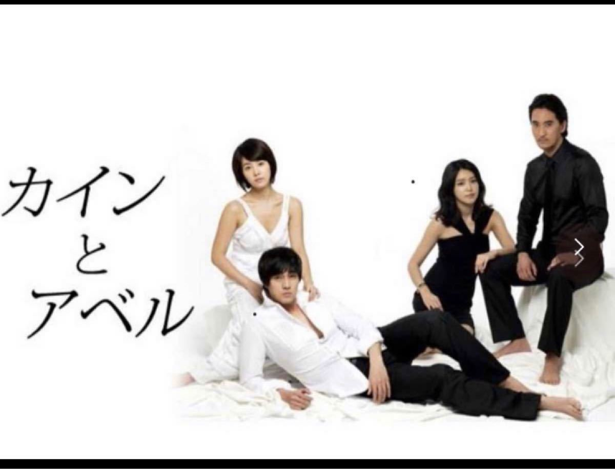 韓国ドラマ DVD カインとアベル ソジソプ