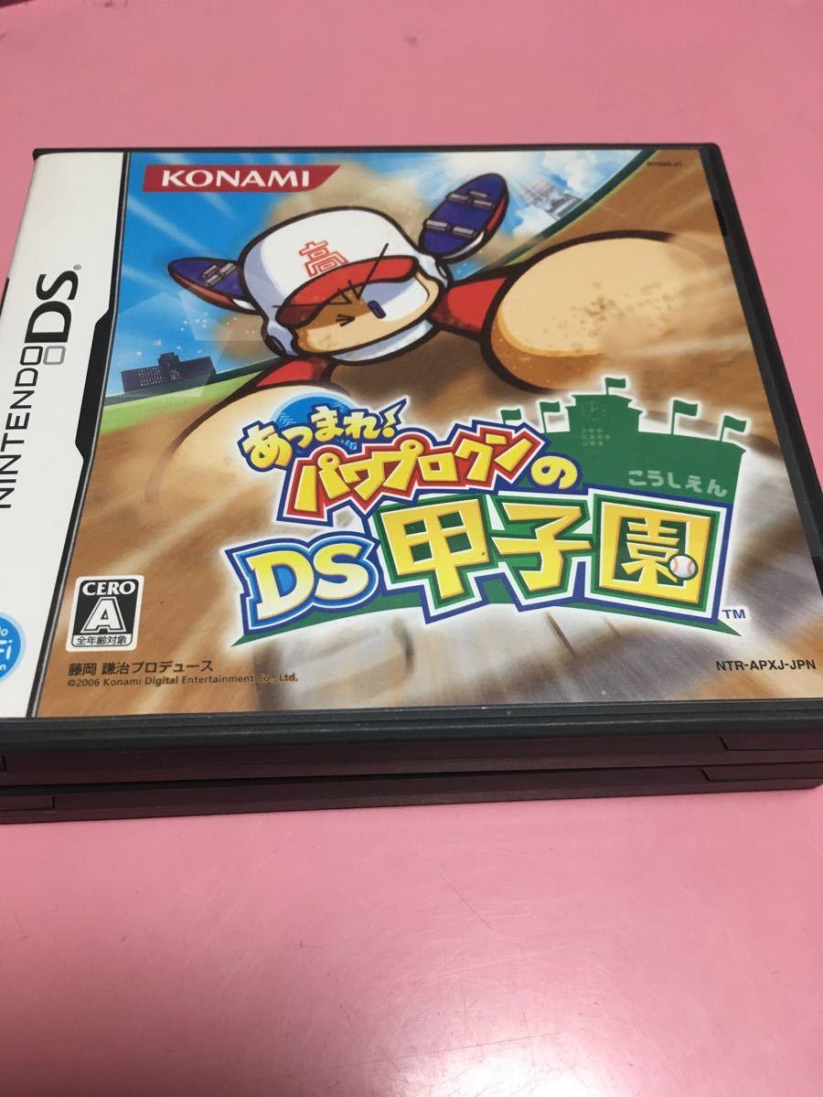 【DS】 プロ野球 ファミスタDS 2010